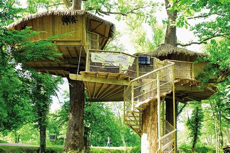 treehouse homes cing 25ft in the air in treehouses on a euroc family
