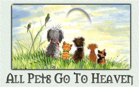 do all dogs go to heaven grieving the loss of your pet books regenbogenbr 252 cke change the way
