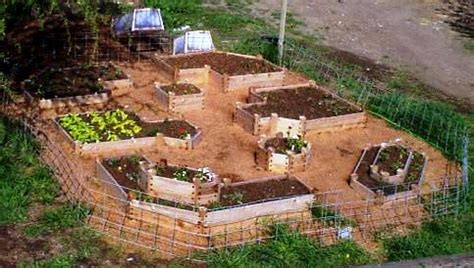 no dig vegetable garden no dig garden info gardening inside big sandbox frame