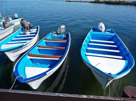 panga boat puerto vallarta puerto vallarta get out there and panga