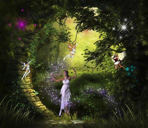 the lost rainforest mez s magic books free illustration magic tale