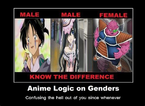 Anime Logic by Anime Logic On Genders 2 By Keyblademagicdan On Deviantart