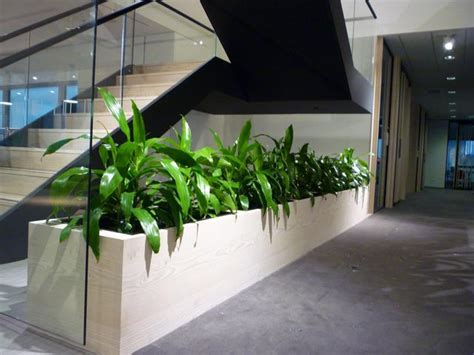 Office Planter by Visit Our Gallery Our Gallery View Our Services