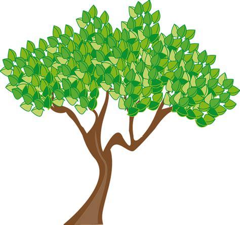 imagenes png en illustrator vector gratis temporada verano 193 rbol hojas imagen
