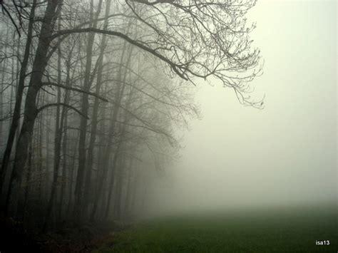 foggy s foggy days isathreadsoflife s blog