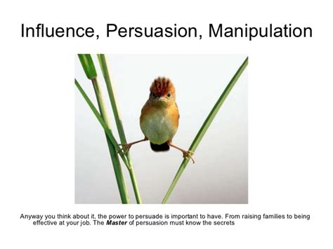 influence persuasion manipulation
