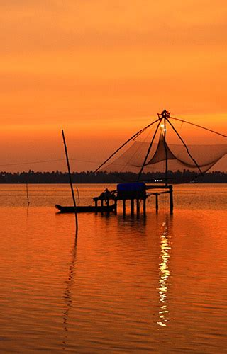 wallpaper for walls kochi royalty free photos