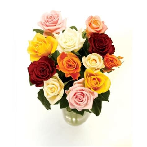 Send Roses by 12 Mixed Bouquet Free Uk Delivery Post A