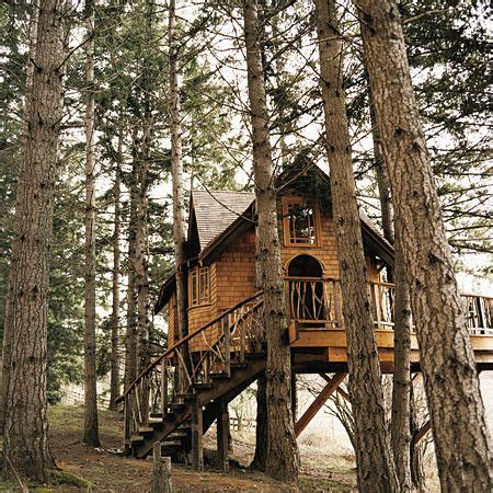 house movers washington state tree house in washington state outside loves pinterest