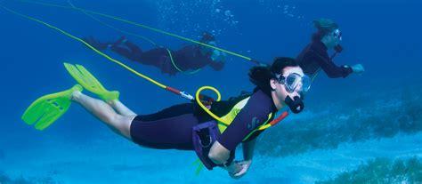 dive sistem brownies third lung hookah diving system dan s dive shop