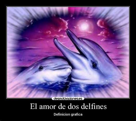 imagenes de amor animadas de delfines frases de amor con imagenes de delfines imagui