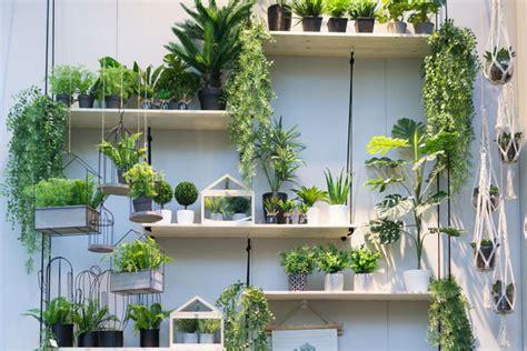 Pflanzen Deko by Jungle Trend F 252 Rs Zuhause Pflanzen Deko Der
