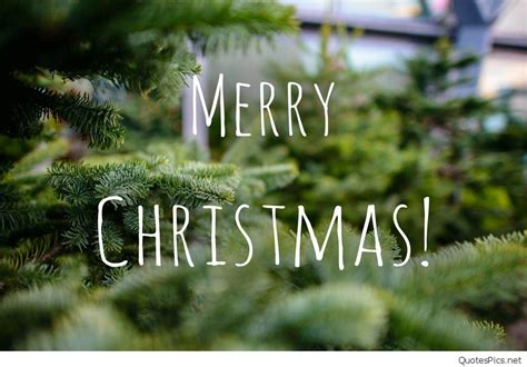 merry christmas instagram tumblr