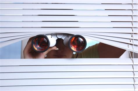 Spying On The Next Door by When Is Spying On Neighbors A Idea Background Hawk