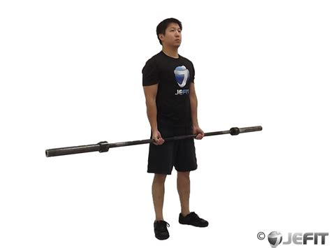Barbell Curl barbell curl exercise database jefit best android and iphone workout fitness exercise