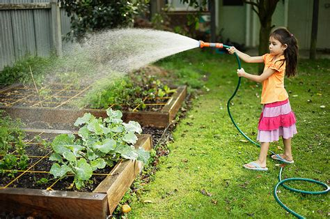 kids   garden  ways  parents kids  grow
