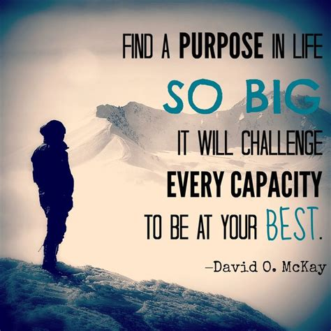 a for every purpose my journey searching for books quot find a purpose in so big it will challenge every