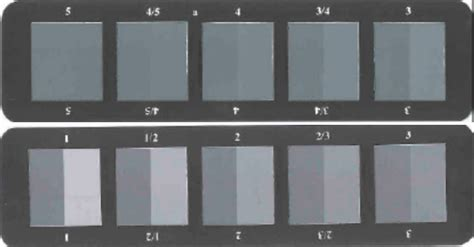 color scale for grey scale for color assessing qinsun