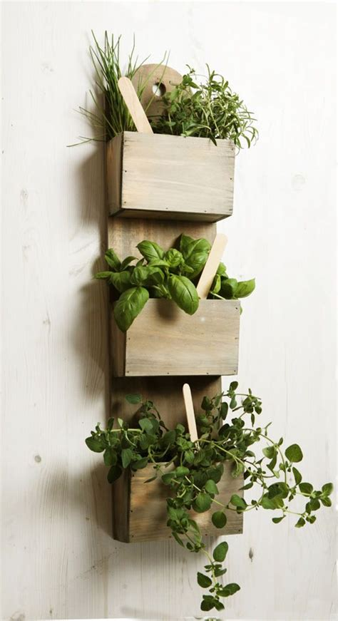 indoor herb pots wall mounted wooden kitchen herb planter kit with seeds