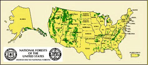 map us national forests national park national forests encyclopedia