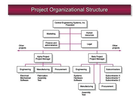 organizational chart template doc organizational chart template doc images template design