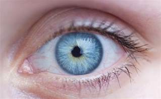 blue eye color total eye log in