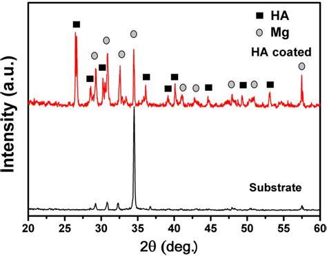 ijms  full text  vitro corrosion  cytocompatibility properties  nano whisker