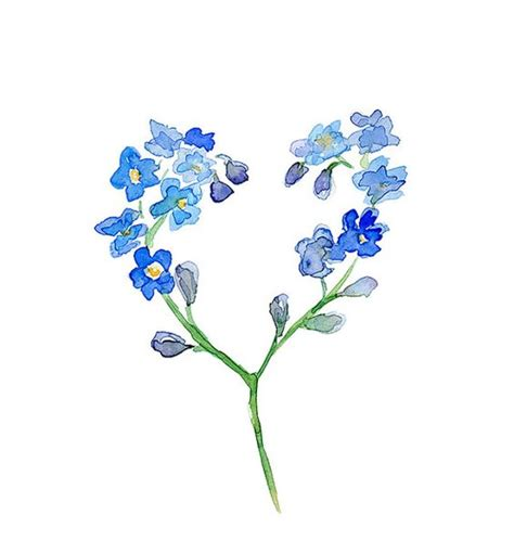 printable forget me not flowers flower watercolor painting forget me not flower