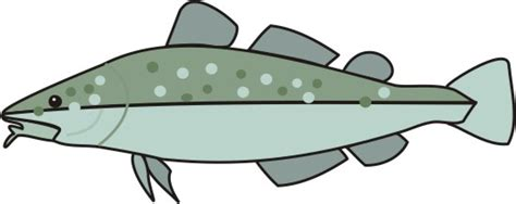 coloring pages of cod fish codfish coloring pages for kids to color and print