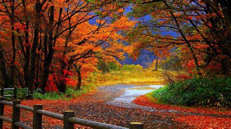 best high definition 10 best high definition autumn wallpaper hd 1080p for