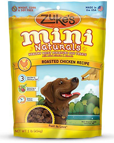 treats for puppies the best treats for puppies or dogs