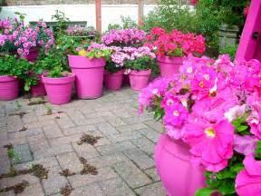 flower garden ideas plants photograph ideas for planting f