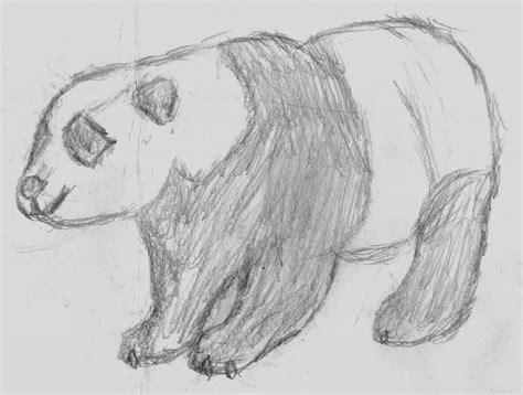 Drawings Of Animals by Cool Drawings Of Animals Cool Sketches To Draw Of Animals