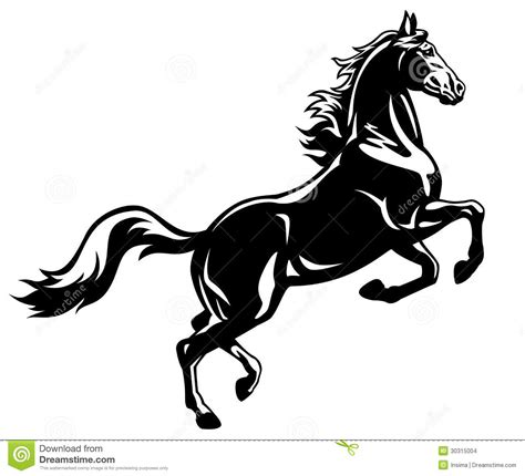 draw horse illustrator rearing horse black white stock vector illustration of