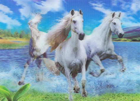 how to in water h 5 3 white horses in water 3d picture 3dddpictures com