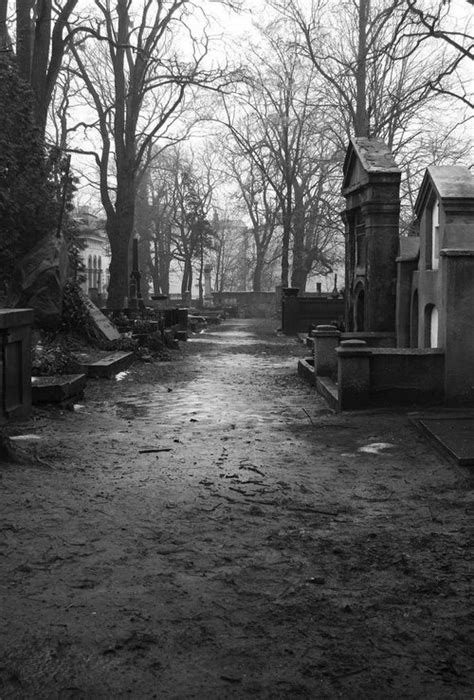 SUSANNE LEIST: THE DEAD GAME -- A PARANORMAL MYSTERY