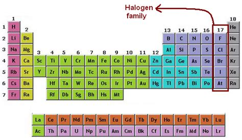 halogen elements periodic table faq from halogens iit jee chemistry
