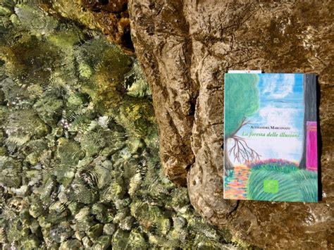 libro a forest la foresta delle illusioni libro di alessandra marconato galline padovane