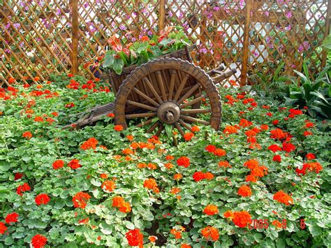 Pretty Flower Garden Ideas Beautiful Flowers In The World