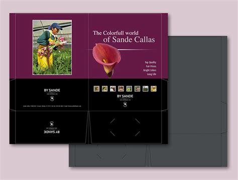 sande callas for litlle bloom on behance
