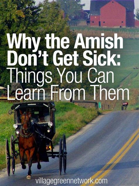 Why The Amish Dont Get Sick Things You Can Learn From | why the amish don t get sick things you can learn from