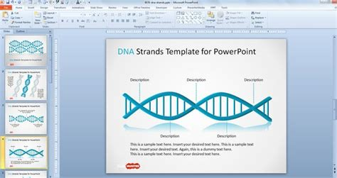 Free Dna Strands Powerpoint Template Free Powerpoint Templates Slidehunter Com Dna Powerpoint Template
