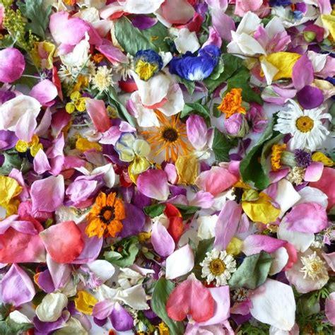 As Decor Flowers Wedding by Dried Flower Petals Flowers Confetti Wedding