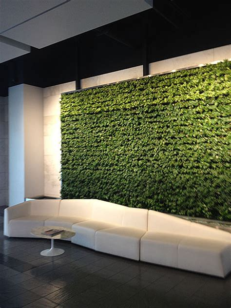 interior plant wall living walls versawalls interior plant design los