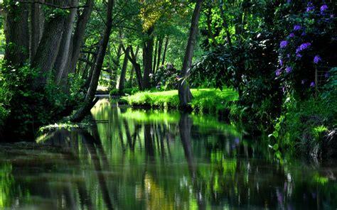 River Garden by River Garden Nature 4k Ultra Hd Wallpaper Hd Wallpapers