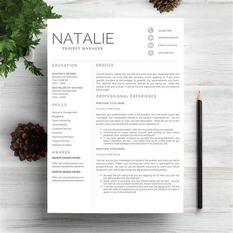 Popular Resume Templates Creative Market 25 Best Ideas About Professional Resume Template On Professional Resume Design