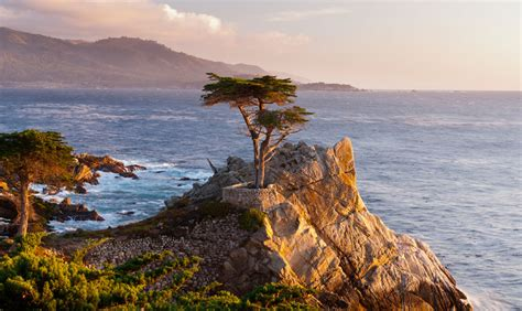 17 mile drive pebble beach carmel by the sea california 17 miles drive monterey carmel california road trip