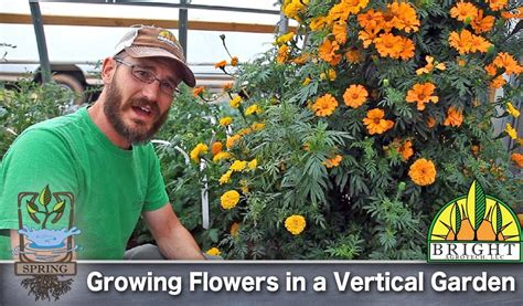 can you grow flowers in a vertical garden