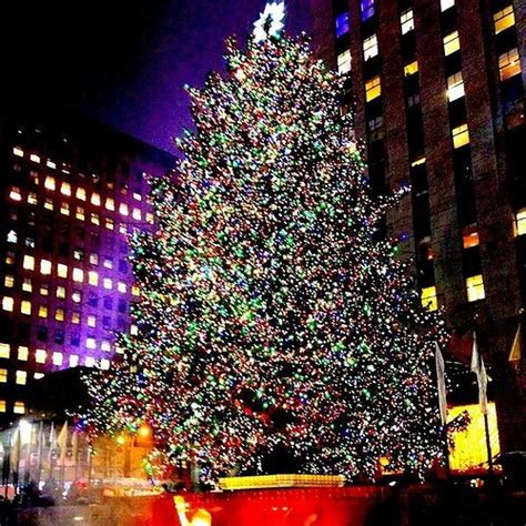 the 2015 rockefeller christmas tree lighting 2015 kicking