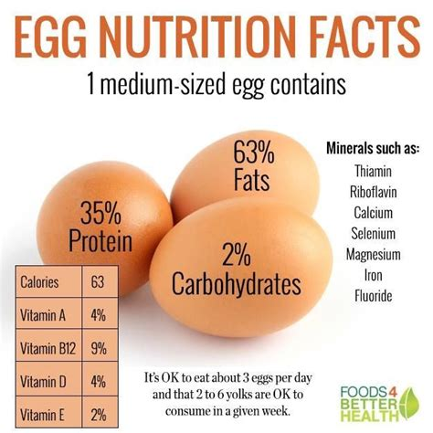 protein in eggs nutrition information egg yolk boiled nutrition ftempo